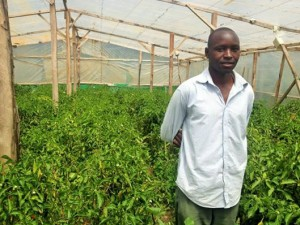 Participant and his pepper farm - rural Kenya
